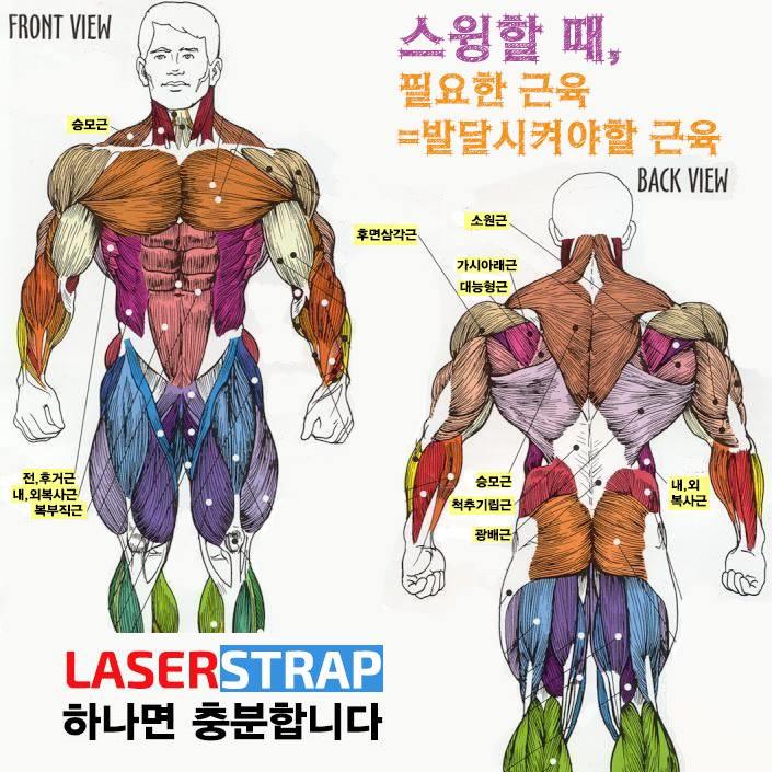 타격에 필요한 근육 강화